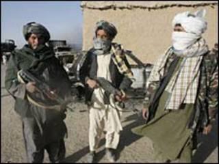 طالبان، آرشیو