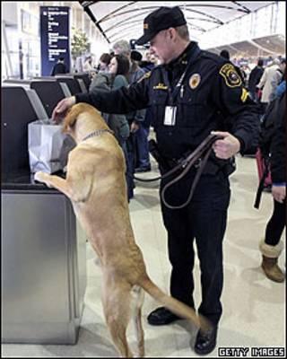 Kiểm tra tại sân bay Detroit sau sự cố