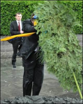 Вінок падає на Віктор Януковича