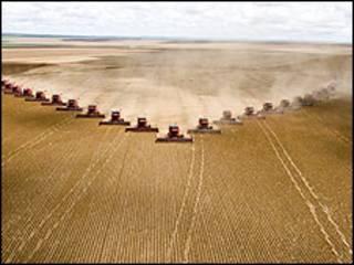 Imagem de arquivo de colheita no Mato Grosso