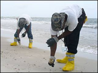 Уборка нефти на пляже острова Дофин