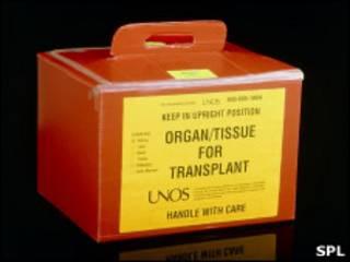 Коробка для транспортировки донорских органов