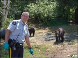Канадский полицейский и медведи