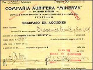 Documento bolsa