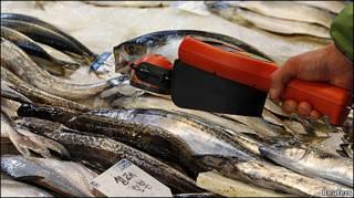 Thử phóng xạ cá nhập khẩu từ Nhật tại một khu chợ ở Seoul, Hàn Quốc