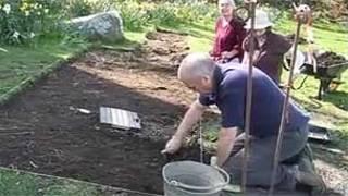 Excavación en busca del elefante de Tregaron