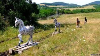 Макеты лошадей на поле
