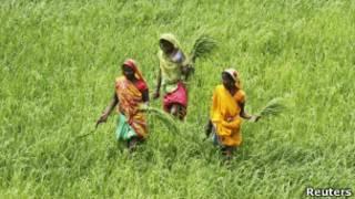 किसान मोबाइल