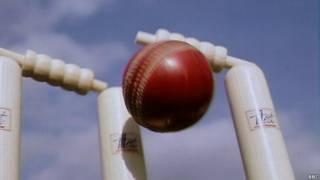 क्रिकेट स्टम्प