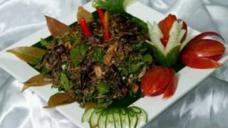 Un plat à base d'insectes