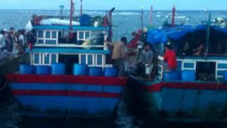 Tàu cá Lý Sơn