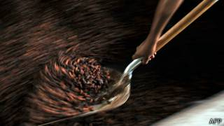 Какао-бобы