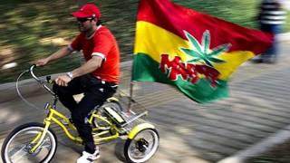 Legalización de la marihuana. Foto Getty Images.