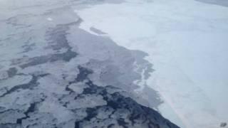 Аркитческий лед
