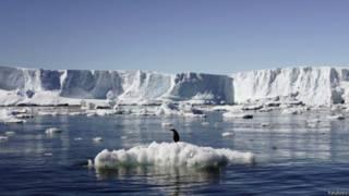 Antártida (Reuters)