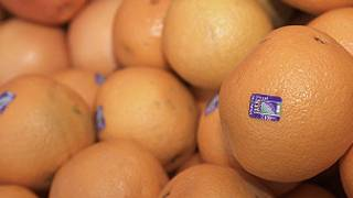 Oranges with stickers