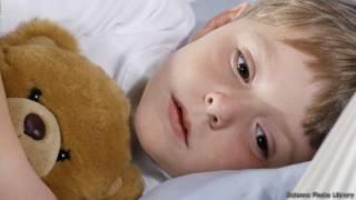 Anak dan boneka beruang, SPL