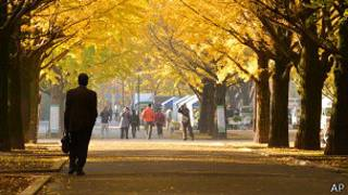 Parque de Tokio