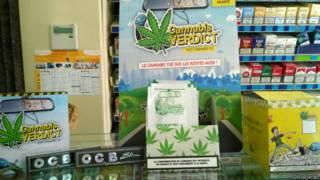 Cannabis Veredict (Foto: Divulgação)