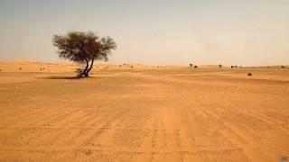 Desierto del Sahara en el sur de Argelia