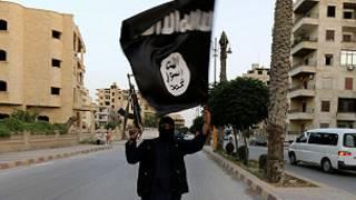 Dan gwagwarmayar kungiyar ISIS