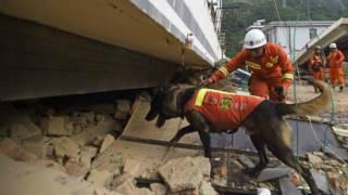 نیروهای کمکی در زلزله چین