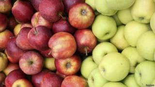 польські яблука