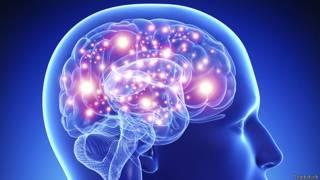 पुरुष मस्तिष्क