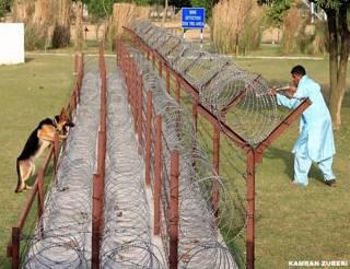 नियंत्रण रेखा पर घुसपैठ रोकने के लिए खास तौर पर प्रशिक्षित किए गए कुत्ते
