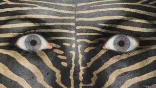 Глаза девушки с раскраской лица под зебру