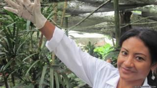 El Invento Colombiano Que Podr A Alargar La Vida De Las