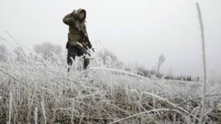 यूक्रेन में संघर्षविराम लागू