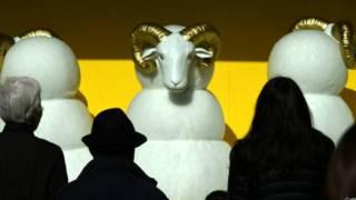 羊年到底是什么羊难煞不少人