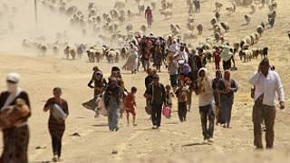 Aba Yazidi benshi barahunze IS imaze gufata umujyi wa Sinjar.