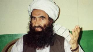 जलालुद्दीन हक़्क़ानी, अफ़ग़ान चरमपंथी