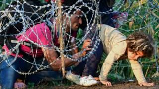 हंगरी की सीमा पर प्रवासी