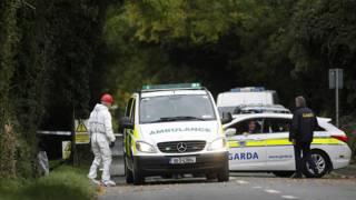 Ирландская полиция