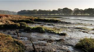 Река Хэмбл