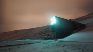 Banco Mundial de Semillas de Svalbard