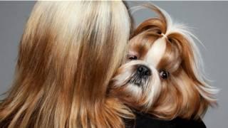 Женщина с собачкой на плече