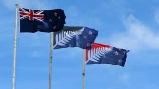 Варианты дизайна флагов