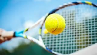 Wasan Tennis
