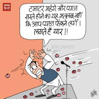bbc hindi, cartoon, kirtish, onion, tomato