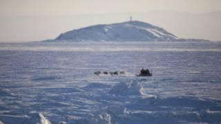 Канада розслідує походження таємничого дзижчання у Арктиці