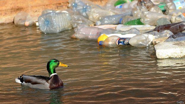 [COC GL] Plastik... Plastik Dimana-mana...