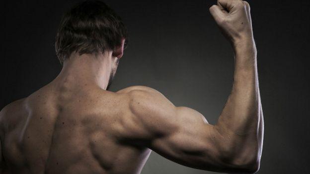 Un brazo musculoso