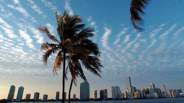Paisaje de Miami