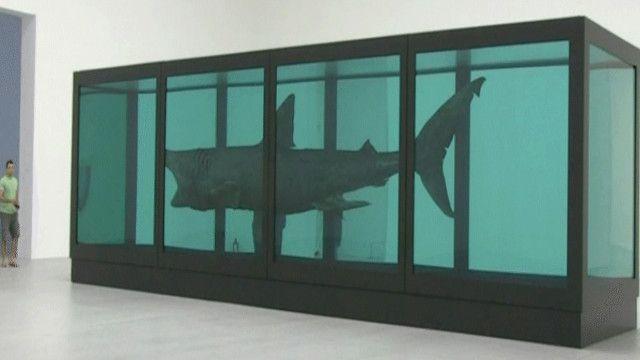 سمكة القرش المحفوظة للفنان البريطاني داميان هايرست