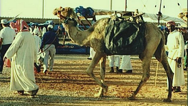 Арабские традиции
