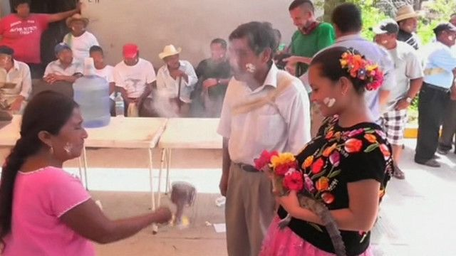 "Prefeito mexicano ""se casa"" com crocodilo em ritual tradicional (BBC)"